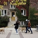 People walk their dogs on the campus of the University of Wisconsin-Madison as the coronavirus disease (COVID-19) outbreak continues in Madison, Wisconsin, U.S., October 19, 2020. REUTERS/Bing Guan