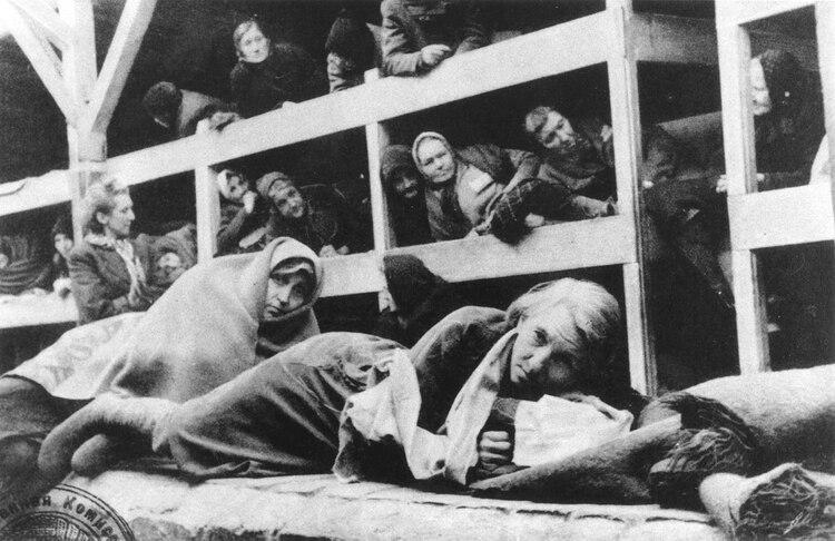 Mujeres prisioneras en las barras de Auschwitz (Ron Cardy/Shutterstock)