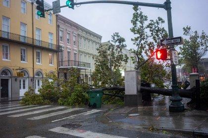 A tree lays across North Peters Street as Hurricane Zeta sweeps through New Orleans, Louisiana, U.S. October 28, 2020. REUTERS/Kathleen Flynn