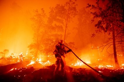 Un bombero apaga las llamas mientras avanzan hacia las casas durante el incendio de Creek en el área de Cascadel Woods del condado no incorporado de Madera, California, el 7 de septiembre de 2020. (JOSH EDELSON / AFP)