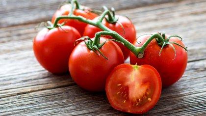 Solo en la región de América Latina la mitad de la producción de tomates se daña y pierde durante la poscosecha (iStock)