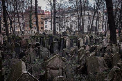 El antiguo cementerio judío de Praga, es uno de los cementerios judíos más antiguos del mundo. Cumplió su función de cementerio desde mediados del siglo XV hasta el año 1787. Durante sus más de 300 años de historia y funcionamiento fue el único lugar donde podían ser enterrados los judíos de Praga. La lápida más antigua es del año 1439 y pertenece al poeta y erudito Avigdor Karo