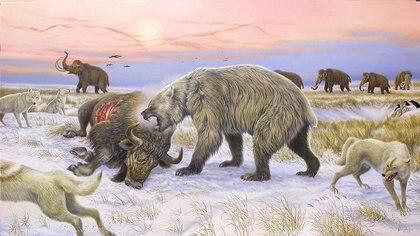 Oso gigante de cara corta comiendo un bisonte en el paisaje de tundra del Pleistoceno: Crédito: Ronaldino y Grant Zazula, Centro de Interpretación de Yukon Beringia