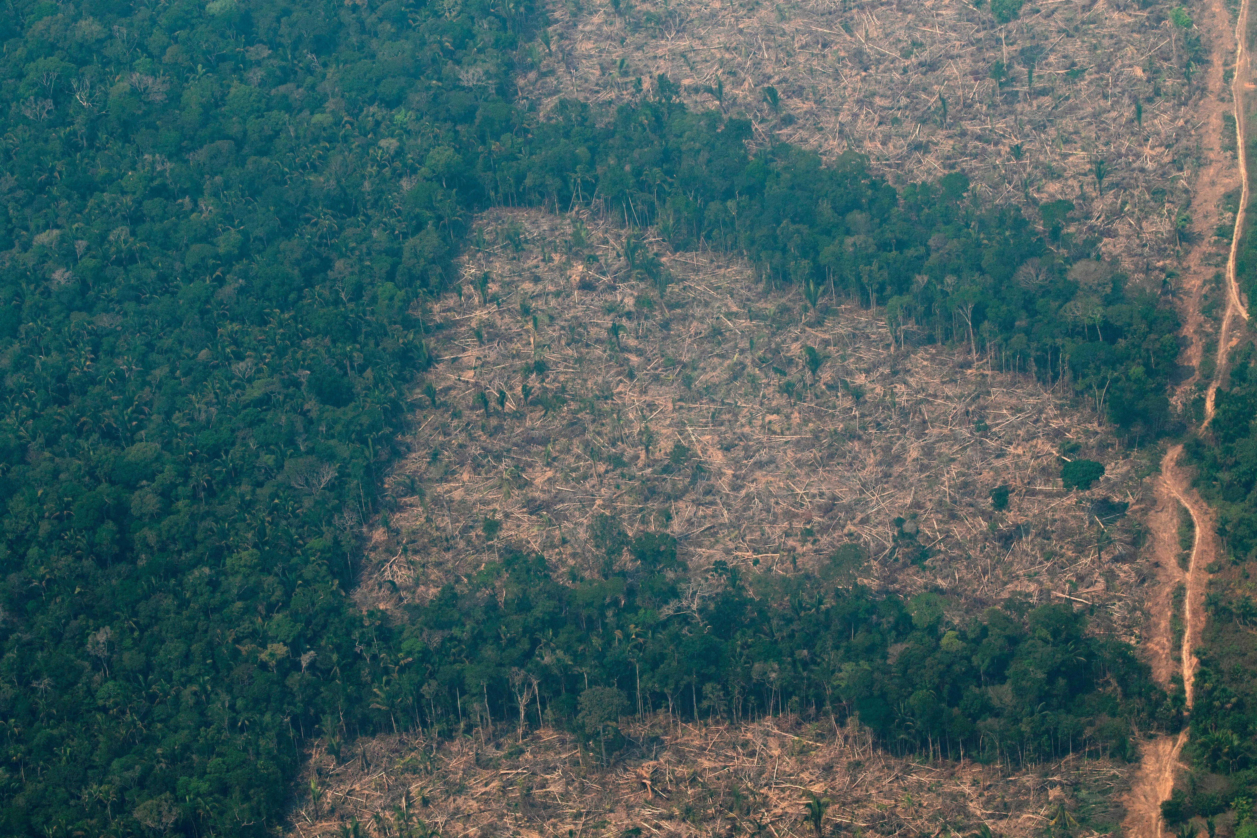 Vista aérea de áreas deforestadas de la selva amazónica en Brasil, en foto de archivo. EFE/ Joédson Alves