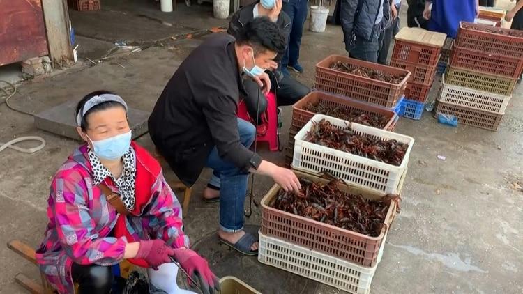 Según varios expertos, el brote podría haberse originado en el mercado húmedo de Wuhan. Pero lo cierto es que el origen del coronavirus sigue siendo un misterio