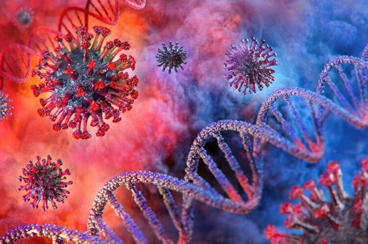 La COVID-19 es la enfermedad infecciosa causada por el coronavirus que se ha descubierto más recientemente. Tanto el nuevo virus como la enfermedad eran desconocidos antes de que estallara el brote en Wuhan (China) en diciembre de 2019 (Foto: Shutterstock)