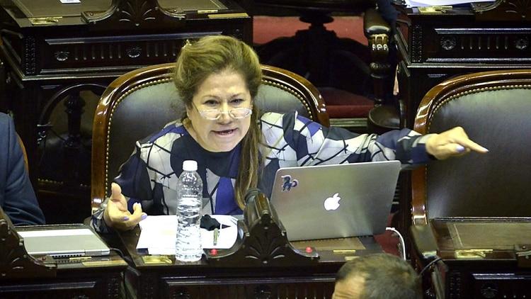 La diputada de Consenso Federal Graciela Camaño (Gustavo Gavotti)