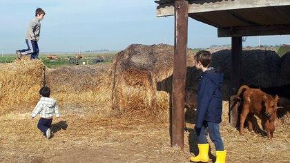 Gabriela es veterinaria y trabaja en una empresa agropecuaria