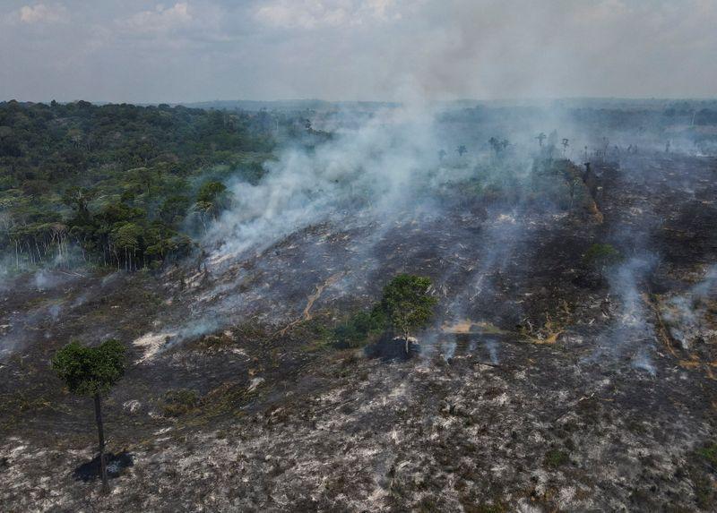 Una vista aérea de una zona deforestada de la selva amazónica en Apui, estado del Amazonas, Brasil