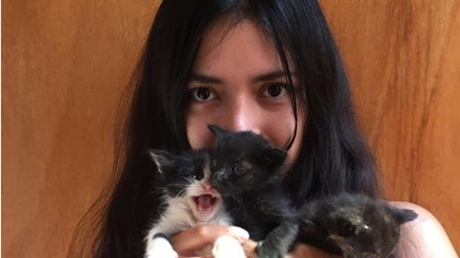Thalía Tetecatl is 23 years old, she is about to graduate as a veterinarian, but she already has many years of experience rescuing orphaned or abandoned baby kittens Photo: (Twitter)