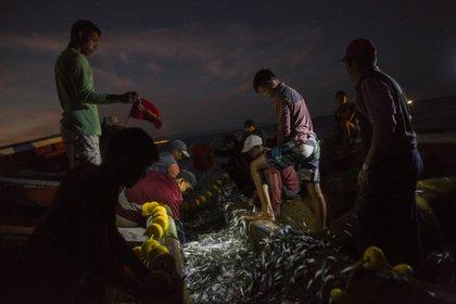 La pesca nocturna en Sucre (AP)
