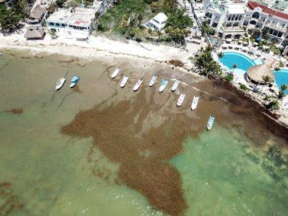 Playa del Carmen, Quintana Roo, 17 de abril de 2021.