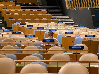 México, a través de Juan Ramón de la Fuente, emitió su voto en la Asamblea General de la ONU (Foto: SRE)