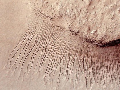 The year on Mars lasts 687 days