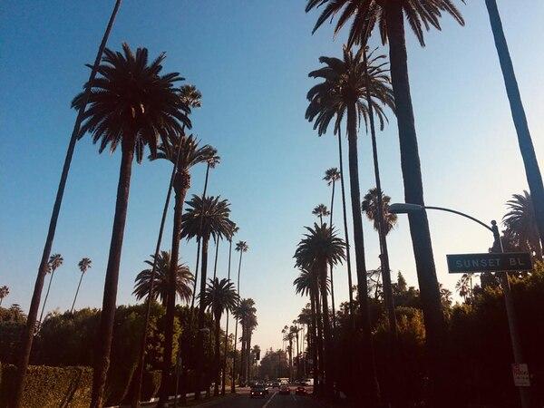 Sunset boulevard, en Beverly Hills