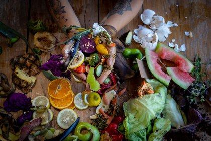 Durante la pandemia, la gente en las casas tomó dimensión de los residuos que genera y quiso empezar a cosechar su propio alimento, entonces comenzaron a utilizar los desperdicios de su propia cocina para crear material orgánico.