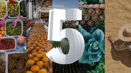 Cinco tecnologías que transformarán la cadena de suministro en los próximos cinco años.