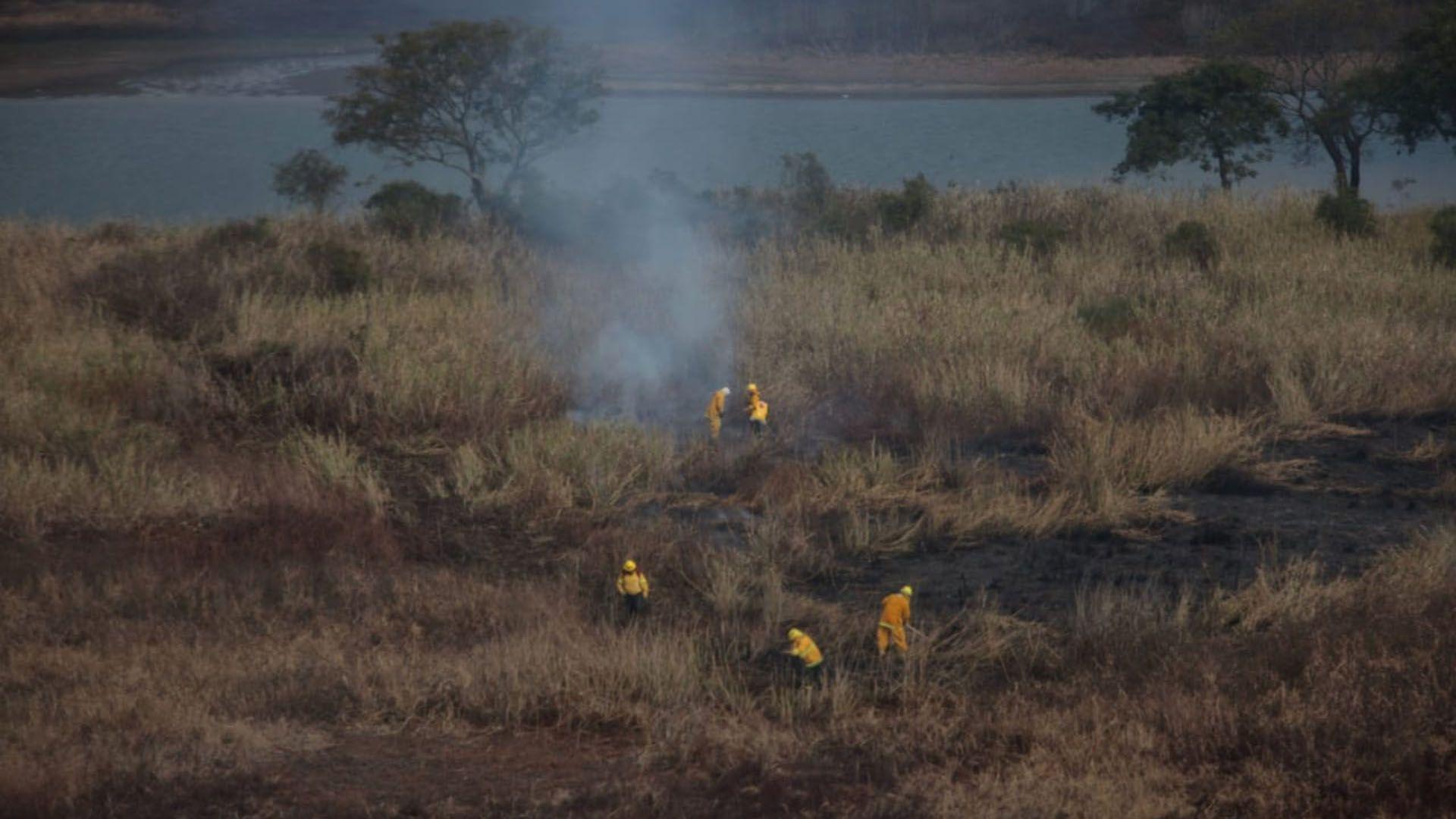 Emergencia ambiental por las quemas en el delta