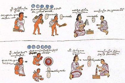 Noble women had a fundamental role in education and lineage Photo: (Codex Mendoza)