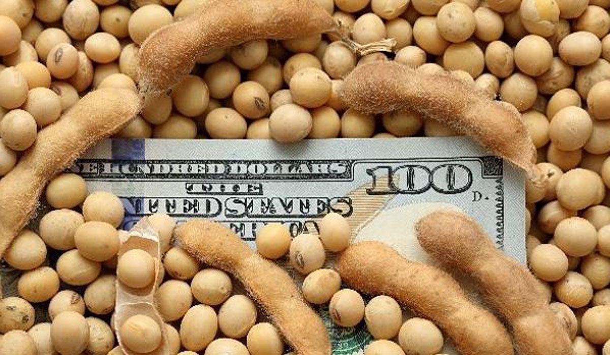 El agro representa más del 40% de las exportaciones argentinas.