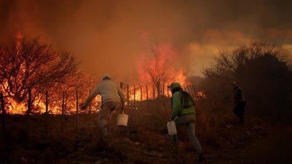 Más del 90% de los incendios se generan por influencia de la mano del hombre (Mario Sar)