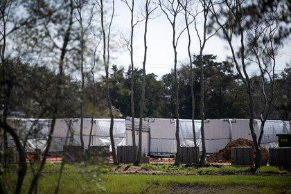 Telas cubren las maquinarias instaladas (Mark Felix/Bloomberg)