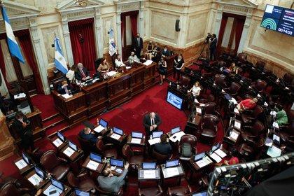 La ley que legaliza el aborto fue sancionada el último miércoles en el Senado EFE/Juan Ignacio Roncoroni