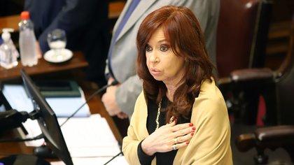 La iniciativa ingresará por el Senado, presidido por Cristina Kirchner (NA)