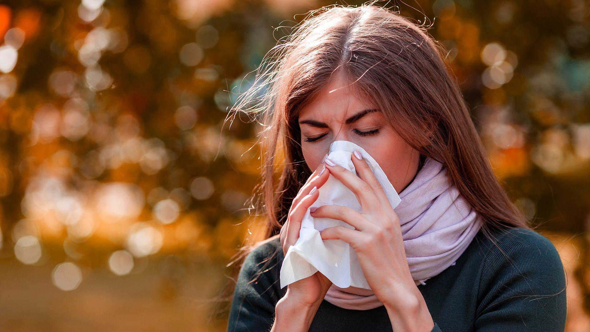 El sistema inmunológico, en especial el de las personas alérgicas, reacciona de manera exagerada y descontrolada ante alérgenos del ambiente (Shutterstock)