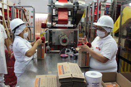La nueva normalidad laboral está acompañada de actividades y medidas sanitarias  (Foto: Cortesía Edomex)