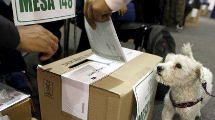 El padrón electoral lideró las búsquedas (Reuters)