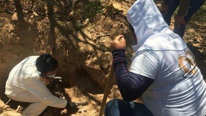 Un grupo de activistas, conformado por 30 mujeres, peinó 30,000 metros cuadrados de terreno (Foto: archivo)