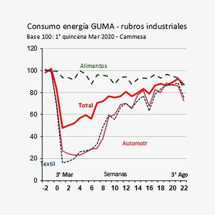 Consumo de energía de grandes usuarios, por rubros industriales. En agosto vuelve a observarse una caída (Ieral de Fundación Mediterránea)