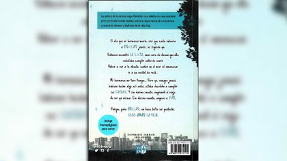 """Contratapa de """"Brillarás"""", de Anna K. Franco"""