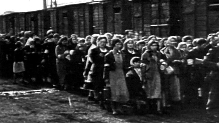 Las mujeres llevadas hacia los campos de concentración. Hasta nacer agosto, los exterminados sumaban 66.700. Cifra aterradora. De los iniciales 500 mil judíos, en el gueto quedaban apenas 70 mil. La hora de la rebelión había llegado. Era preferir morir luchando que asesinados día a día por el Tercer Reich