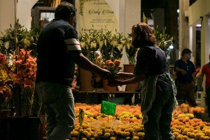 Los altares normalmente llevan la flor de cempasúchil . (Foto: Curtoscuro)