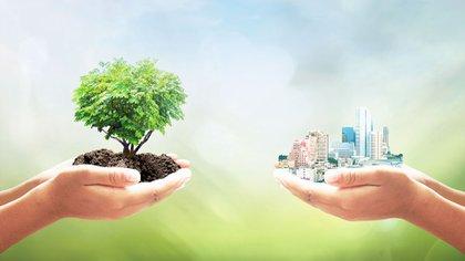 Bancos con basura reciclable y ladrillos de telgopor: las propuestas ecológicas de dos cooperativas (Shutterstock)