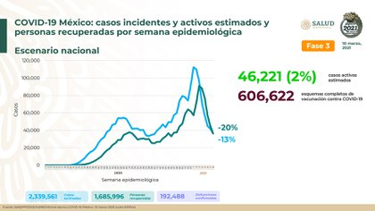 Gráfica de casos estimados y recuperados en el país (Foto: SSA)