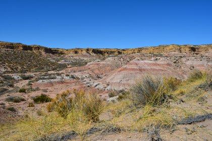 El sitio fosilífero, localizado en el margen sur del embalse Ezequiel Ramos Mexía (Matías Motta)
