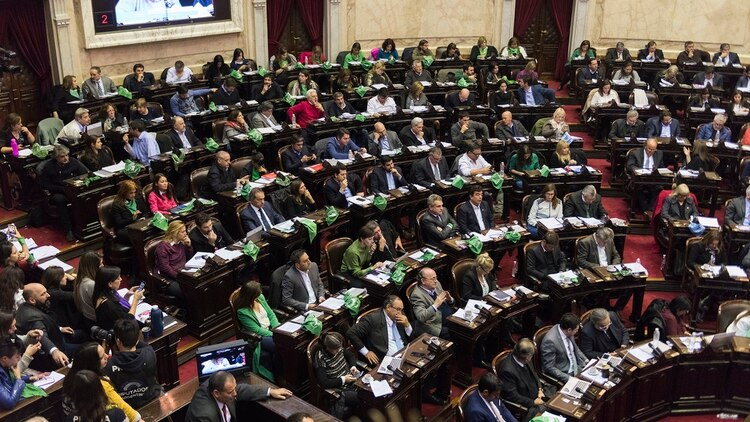 El debate por el aborto en 2018 (Adrián Escandar)
