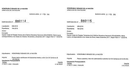 María Laura Leguizamón logró cobrar el 1° de febrero todos sus pasajes no utilizados en 2017.