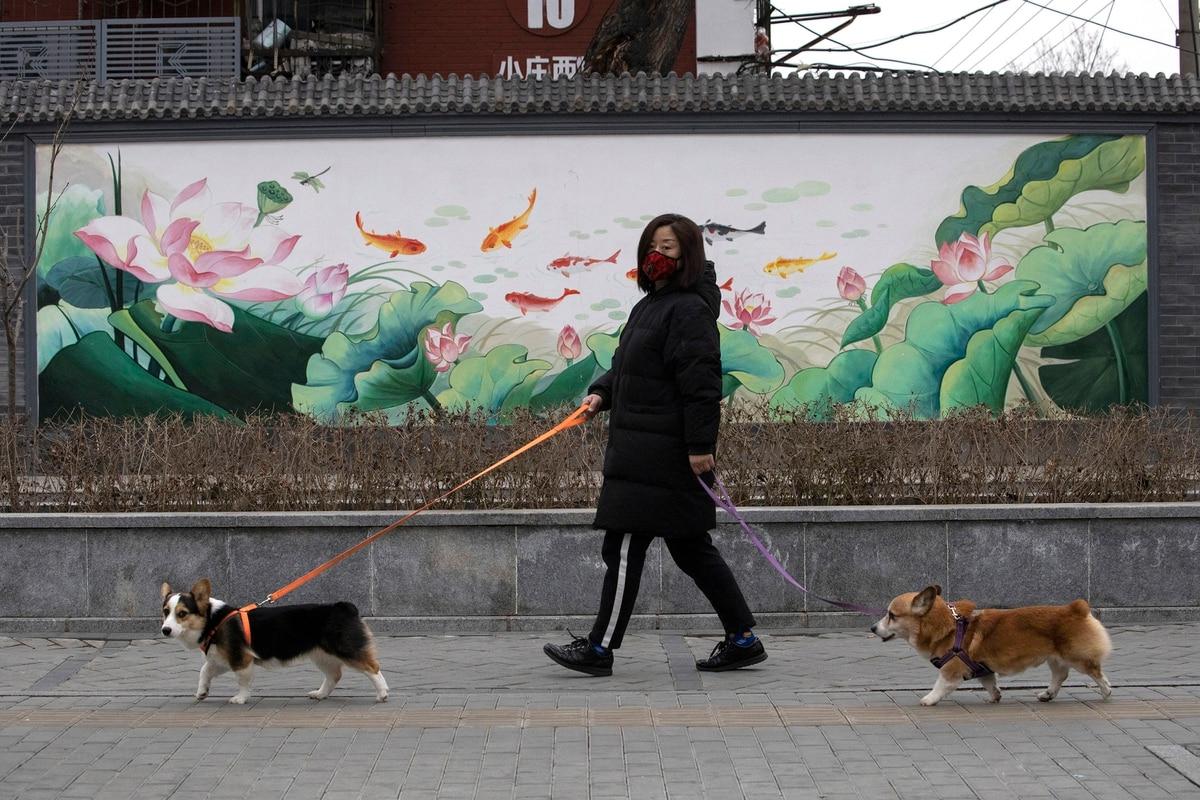 """""""Fideos"""" y """"Pandas"""": el código secreto que usan los chinos para hablar del coronavirus en las redes sociales"""
