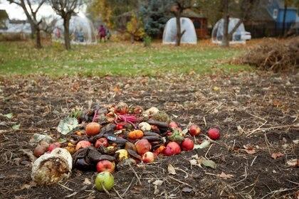 Las iniciativas de compostaje para reducir el daño ambiental pueden marcar la diferencia  REUTERS/Lindsay DeDario
