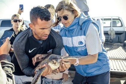 Carlitos a punto de devolver al mar a la tortuga que ahora lleva su nombre. Fotos: Fundación Mundo Marino