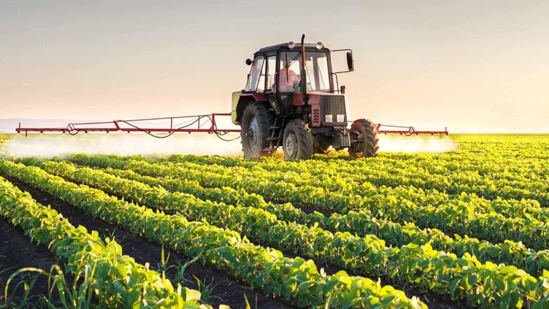Productores de Salta reclamaron al gobierno medidas para mejorar su competitividad. Alertaron sobre la alta presión impositiva y se mostraron preocupados por la pérdida de atribuciones de la Secretaría de Gobierno de Agroindustria