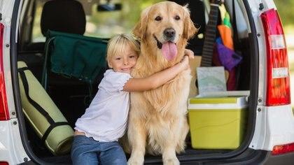 El niño empieza a ponerse en el lugar del otro, en este caso de un ser indefenso como la mascota (Getty)