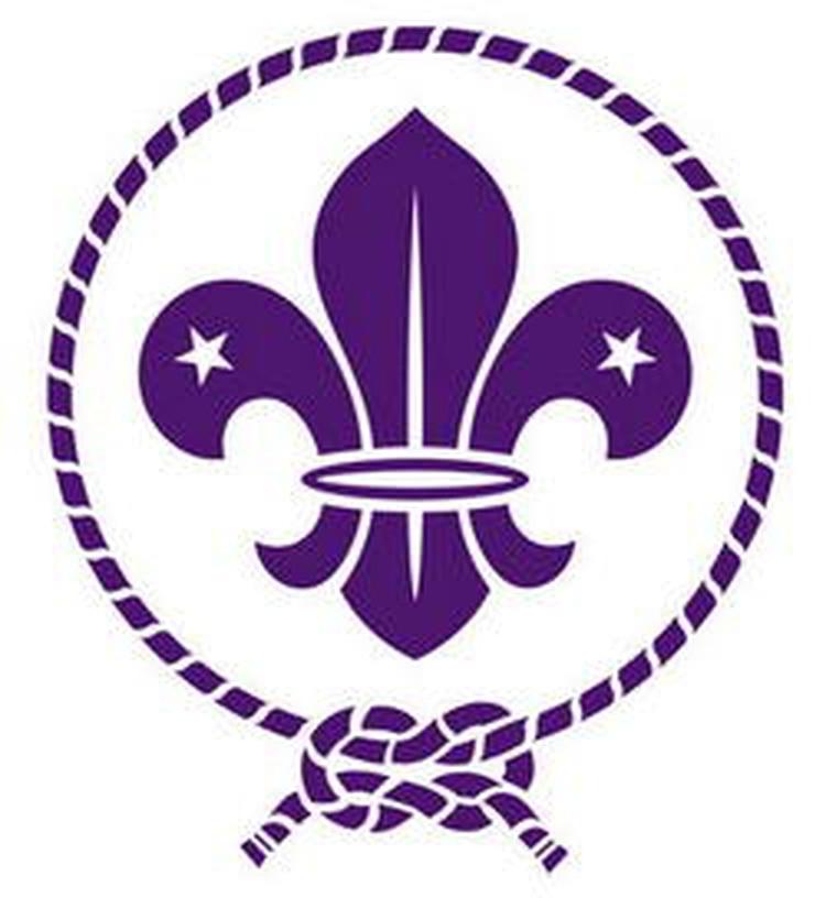 Logotipo de la organización de Boys Souts