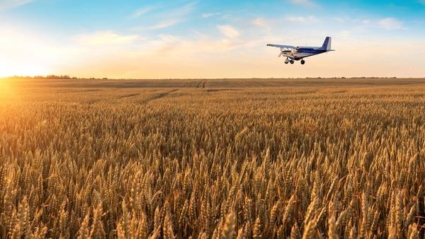 Argentina ha pasado a ser la tercera o cuarta fuerza área agrícola en el mundo.