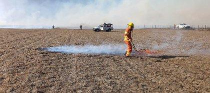 Con la ayuda de otros productores y dos dotaciones de bomberos, Gabriel De Raedemaecker logró controlar el incendio y apagarlo (Fotos: CRA)