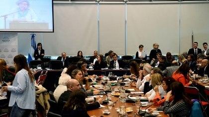 El plenario de comisiones se reunirá el martes para sacar dictamen de mayoría con los cambios incluidos en el texto (Telám)